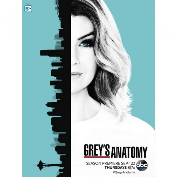 Grey's Anatomy - The Complete Season 13 DVD (for NZ Buyers)