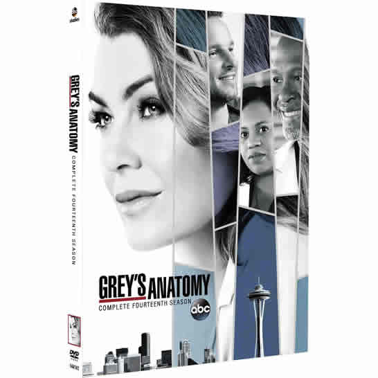 Grey's Anatomy - The Complete Season 14 DVD (for NZ Buyers)