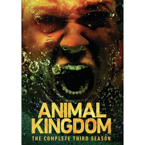 Animal Kingdom - The Complete Season 3 DVD (for NZ Buyers)