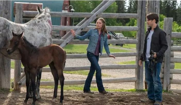Heartland Season 12 Episode 1 Review